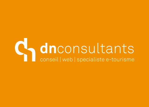 DN Consultants, ancien logo